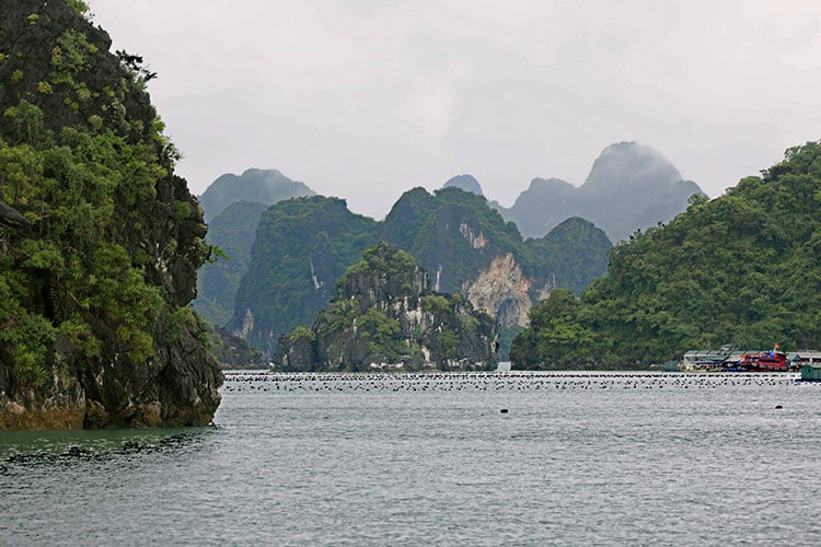 Vietnam - Halong Bay - Bai Tu Long Bay Tour