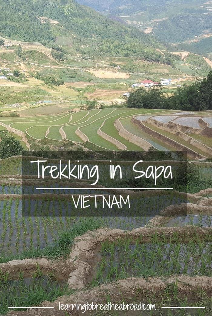 Trekking in Sapa Vietnam | Trekking in Vietnam | Homestay in Sapa Vietnam | Sapa Vietnam Travel | Sapa Trekking Vietnam | Things to do in Vietnam | Things to do in Sapa