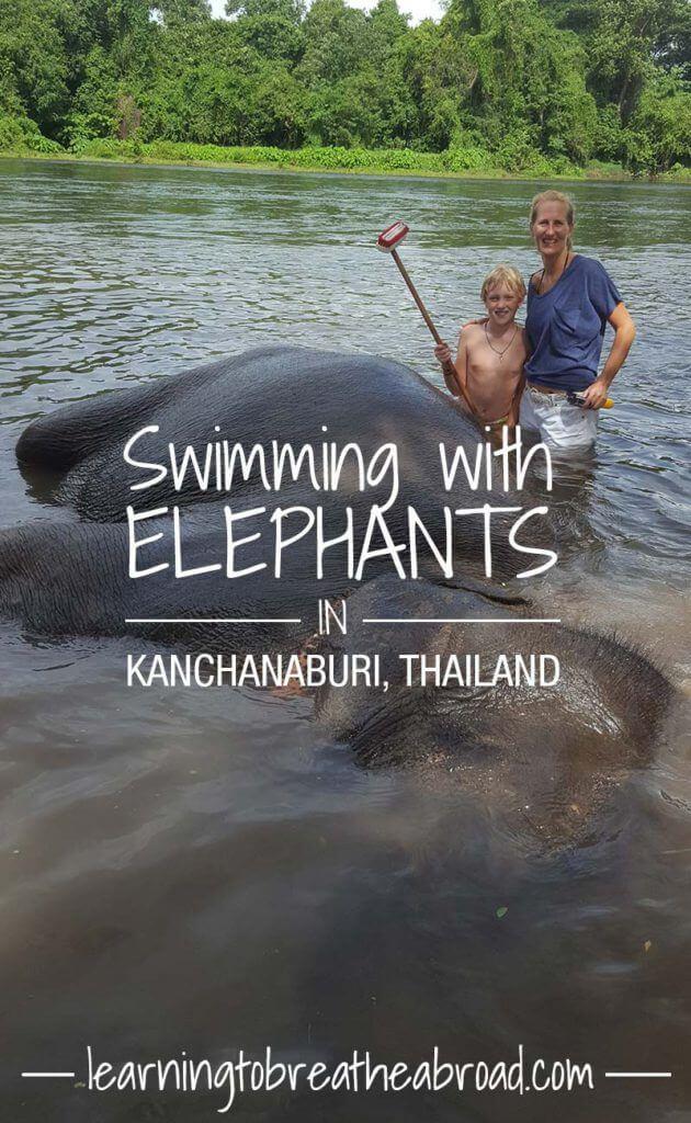 Swimming with Elephants at Elephant World