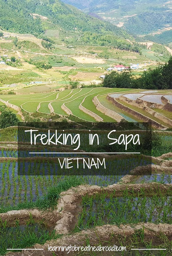 Trekking in Sapa Vietnam. Trekking in Vietnam and Homestay in Sapa Vietnam. Sapa Vietnam Travel. Read about things to do in Vietnam and things to do in Sapa #sapa #sapatravel #sapatrekking