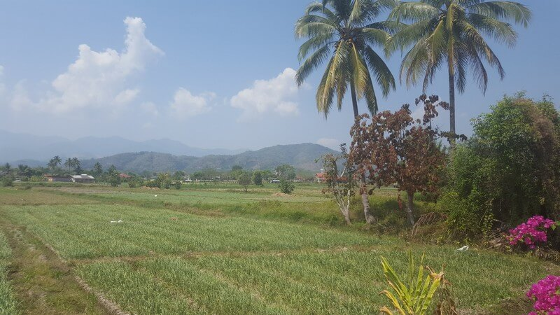 Countryside in Fang
