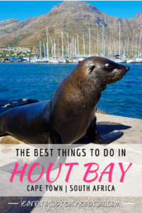 Things to do in Hout Bay, Cape Town, South Africa