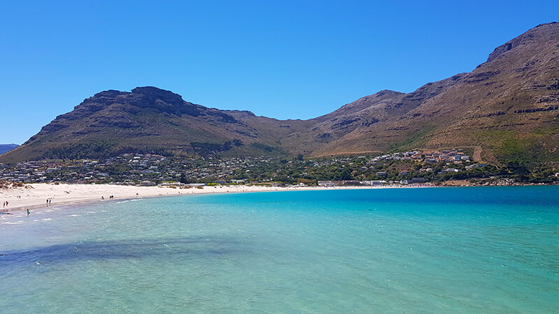Things to do in Hout Bay: Hout Bay Beach in Hout bay, Cape Town, South Africa