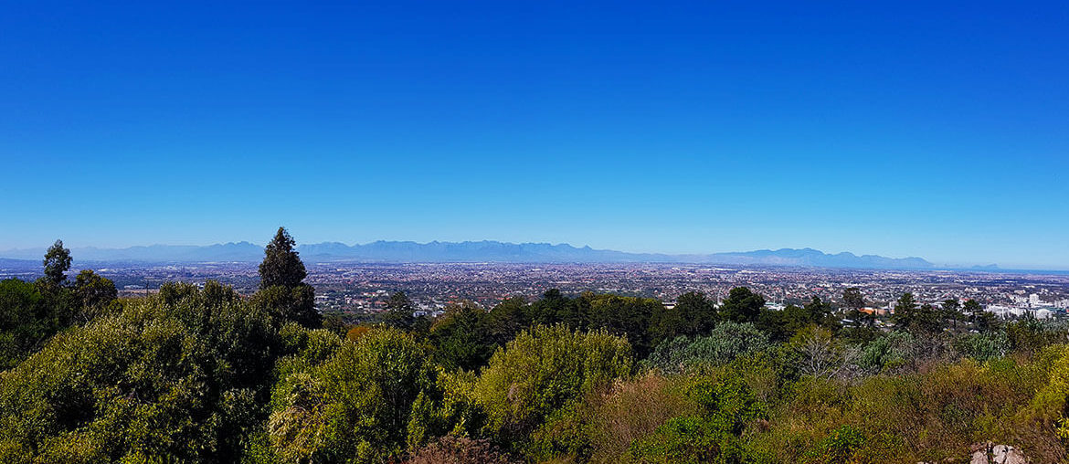 A family friendly walk in Newlands Forest on Table Mountain in Cape Town, South Africa. Gentle mountain walk.