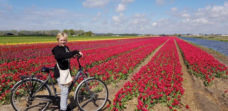 Riding bikes at keukenhof
