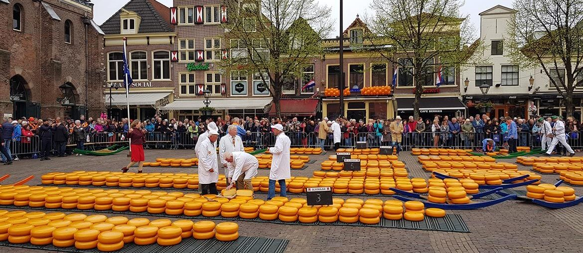 Alkmaar Cheese Market on Kings Day - Learning to Breathe Abroad