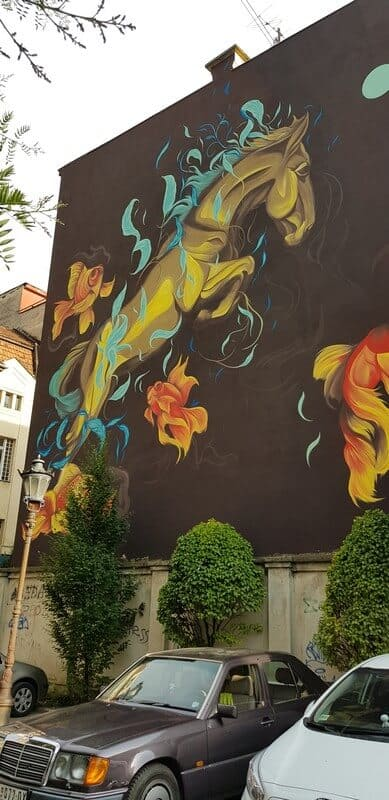 Sightseeing Tour of Novi Sad: Graffiti