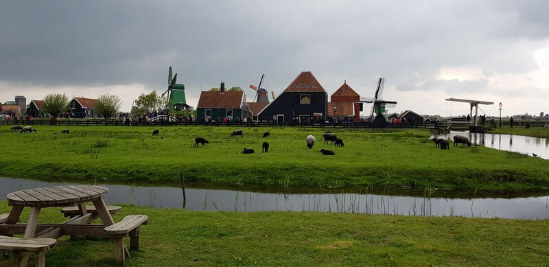 Pastoral scenes at Zaanse Schans in Netherlands