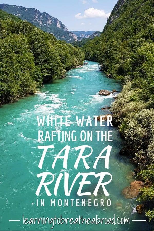 White water rafting on the Tara River in Montenegro
