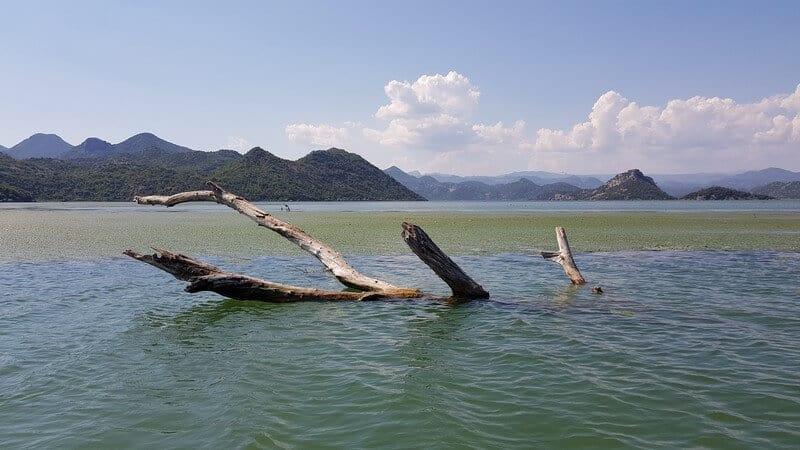 Lake Skadar National Park with karst mountains