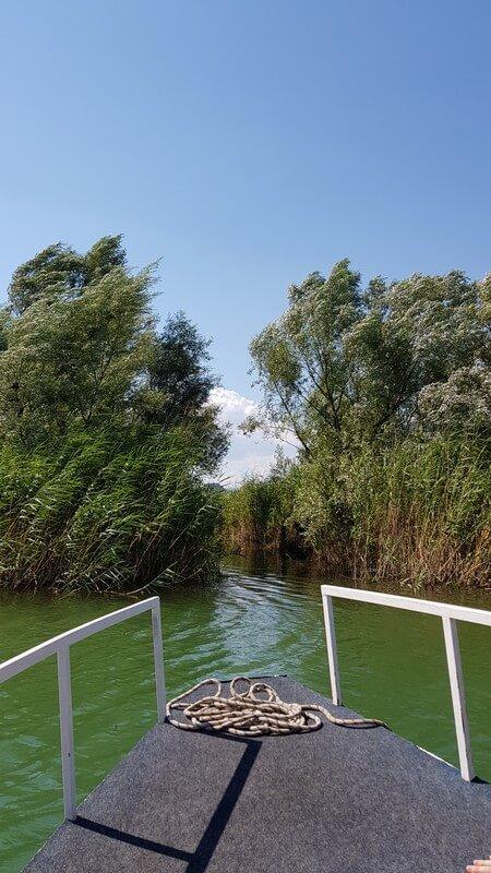 Lake Skadar: Narrow canal through the reeds