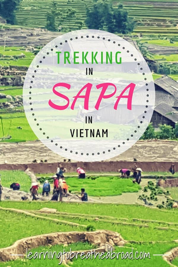 Trekking in Sapa was a highlight of our trip. Read about our personalised trekking in Sapa tour, including home stays, waterfalls and lots of rice paddies! #sapa #vietnam #trekking #trekkingsapa #southeastasia