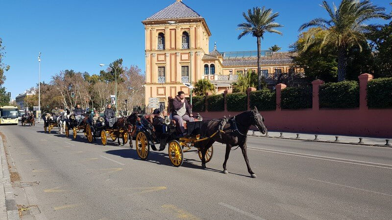 Things to see in Seville: Horse and Cart