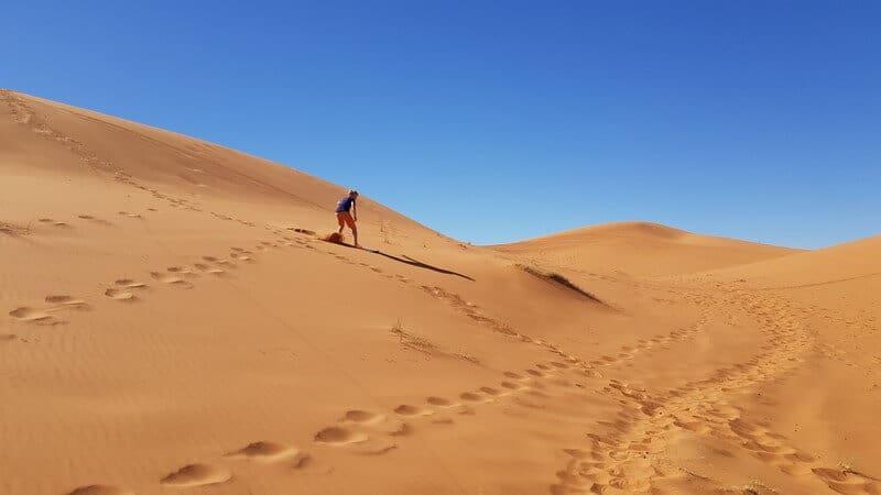 Sandboarding in Merzouga in Morocco