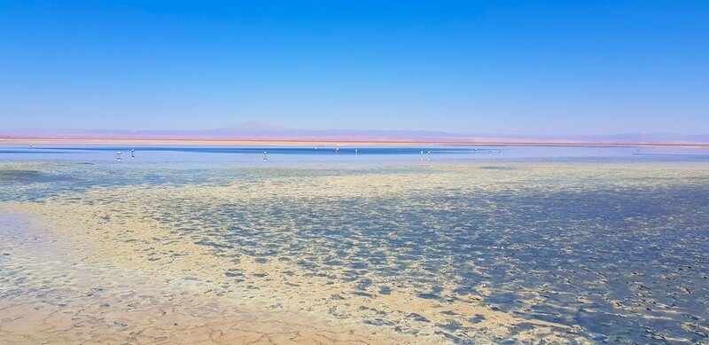 Rainbow colours at Laguna Chaxa in Sand Pedro de Atacama in Chile