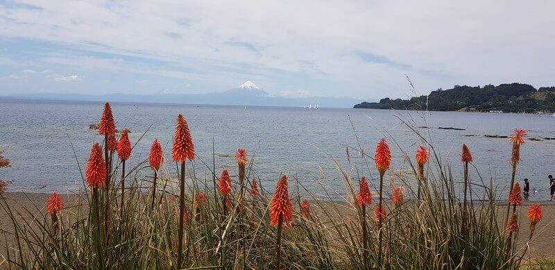 Osorno Volcano from Fruitillar on Lake Llanquihue in Chile